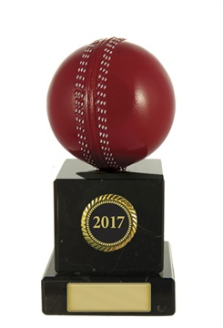 s171301a_discount-cricket-trophies.jpg