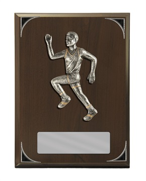 s173703a_discount-athletics-trophies.jpg