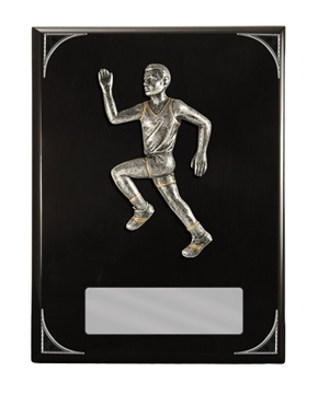 s173705a_discount-athletics-trophies.jpg