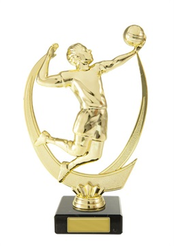 s174608a_discount-volleyball-trophies.jpg