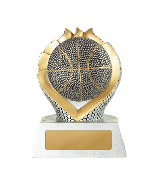s20-2205_discount-basketball-trophies.jpg