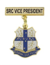 sck-hool-badges---auburn-ps.jpg