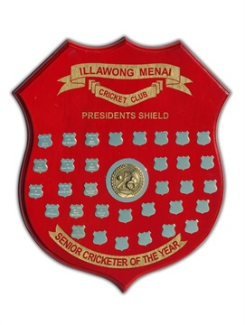 sh1-540-e_timber-shield-1.jpg