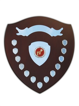 sp6-460_shield-perpetual-award-1.jpg