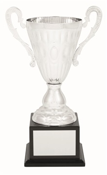 tgc006a_discount-trophy-cups.jpg