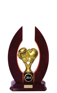 w142501_boxing-trophies.jpg