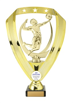 w17-6216_discount-volleyball-trophies.jpg