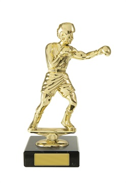 w18-3309_discount-boxing-trophies.jpg