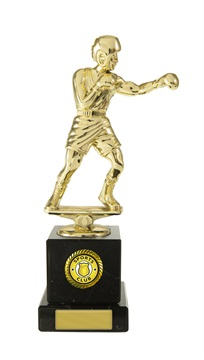 w18-3310_discount-boxing-trophies.jpg