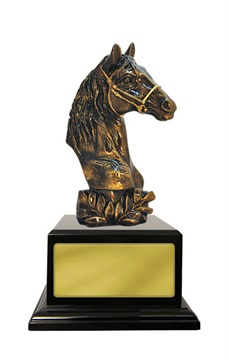 w18-5601_discount-horse-sports-trophies.jpg
