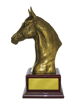 w18-5607_discount-horse-sports-trophies.jpg