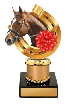 w19-11007_discount-horse-racing-trophies.jpg