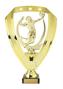 w19-12116_discount-volleyball-trophies.jpg