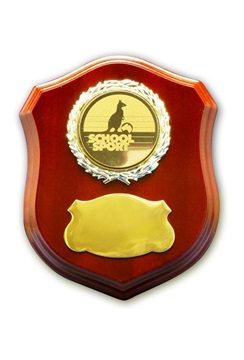 x0167_crest-shield-award.jpg