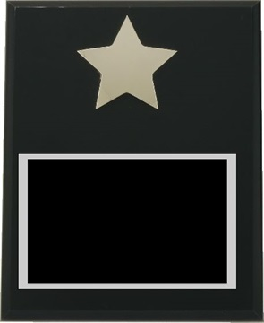x3277_star_plaque.jpg