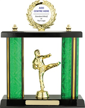 x9178_discount-martial-arts-trophies.jpg