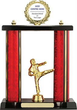 x9179_discount-martial-arts-trophies.jpg