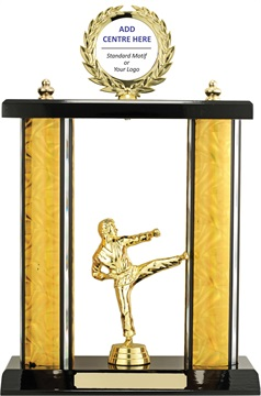 x9181_discount-martial-arts-trophies.jpg